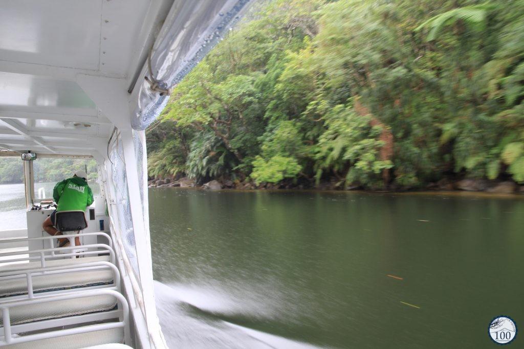 Cruise on Urauchi river