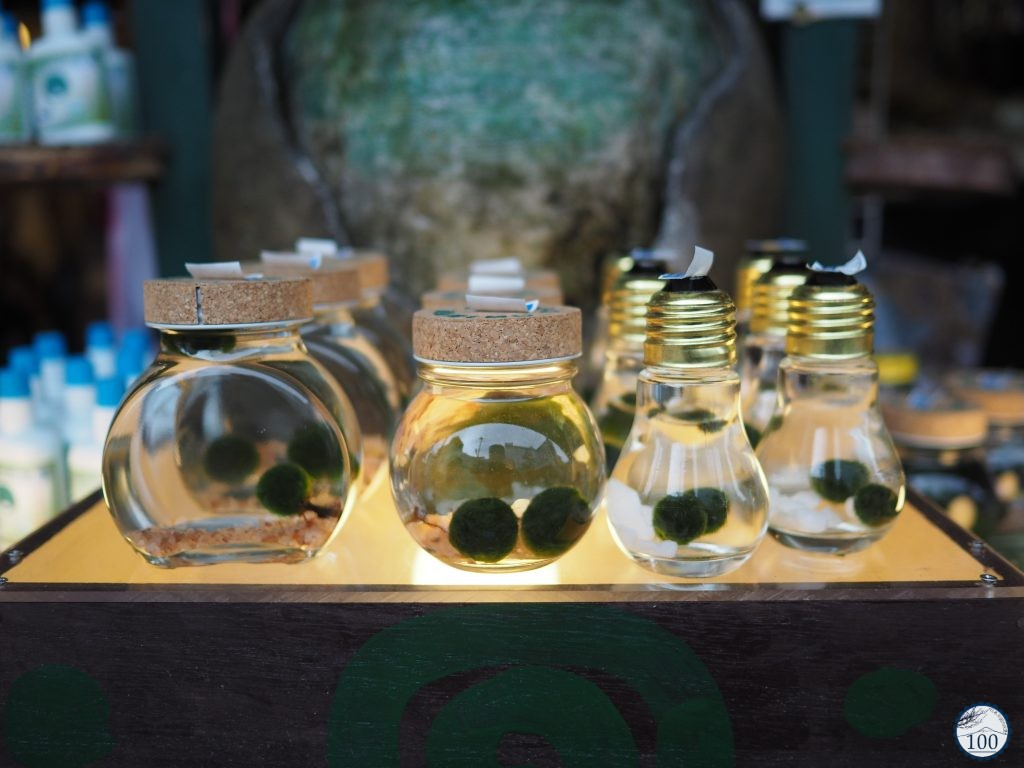 Artificial Marimo in shops