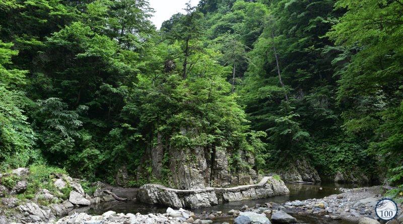 Shirakami-Sanchi