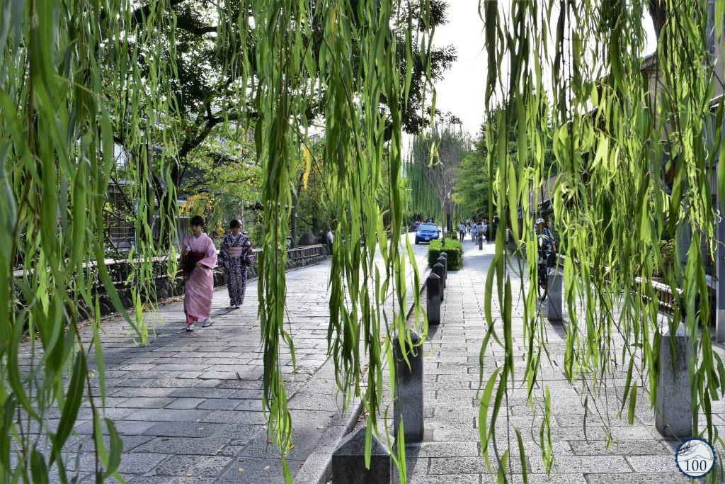 Kyoto - Gion Shirakawa