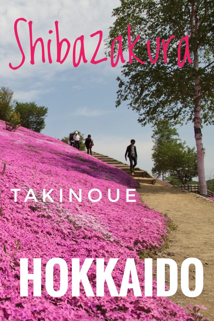 Shibazakura - Takinoue