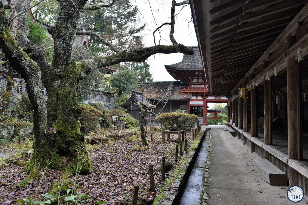 Yoshino - Mikumari jinja