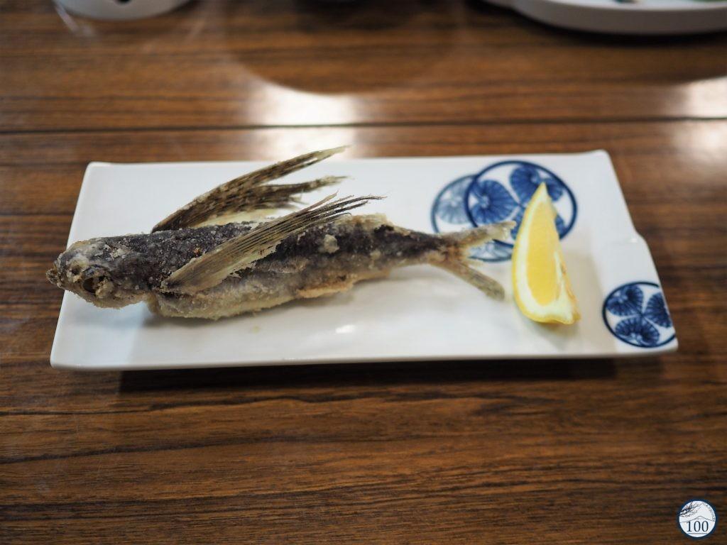Yakushima - Jomon-sugi
