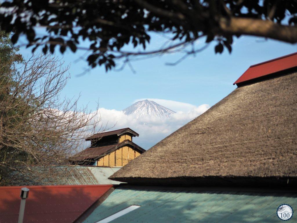 Mont Fuji - Ecotour