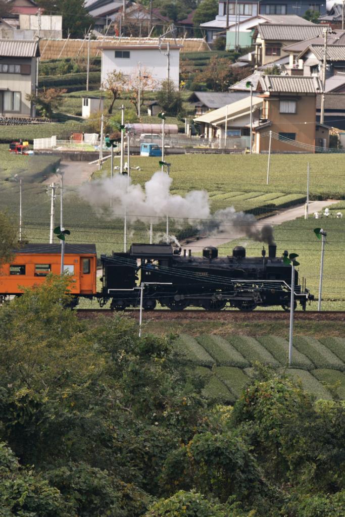 Le chemin de fer Oigawa