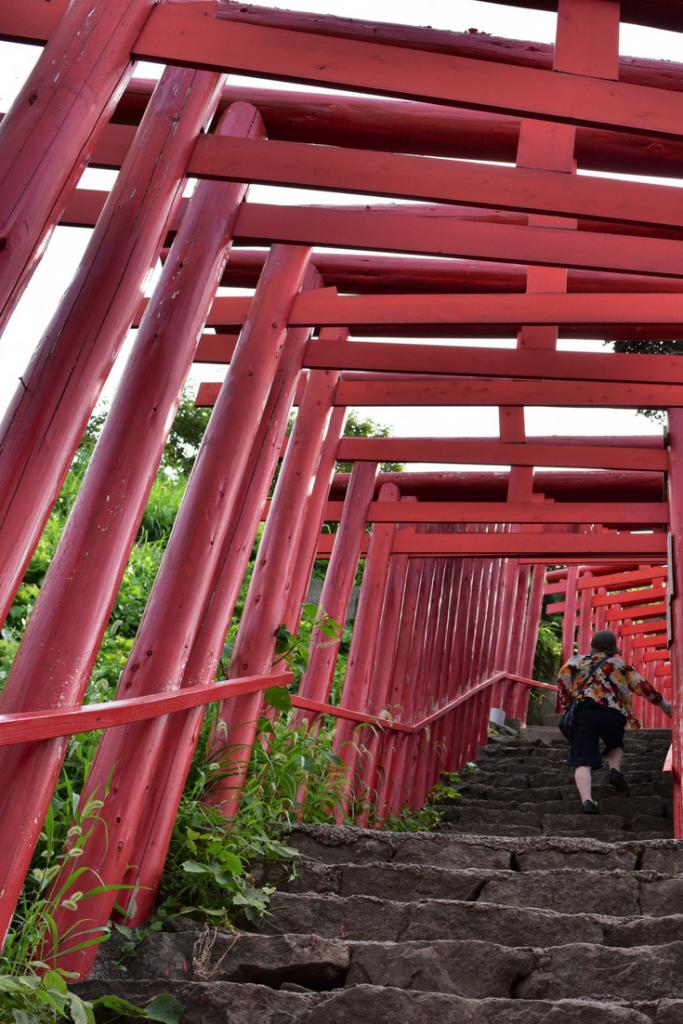 Au cœur du sanctuaire Motonosumi Inari