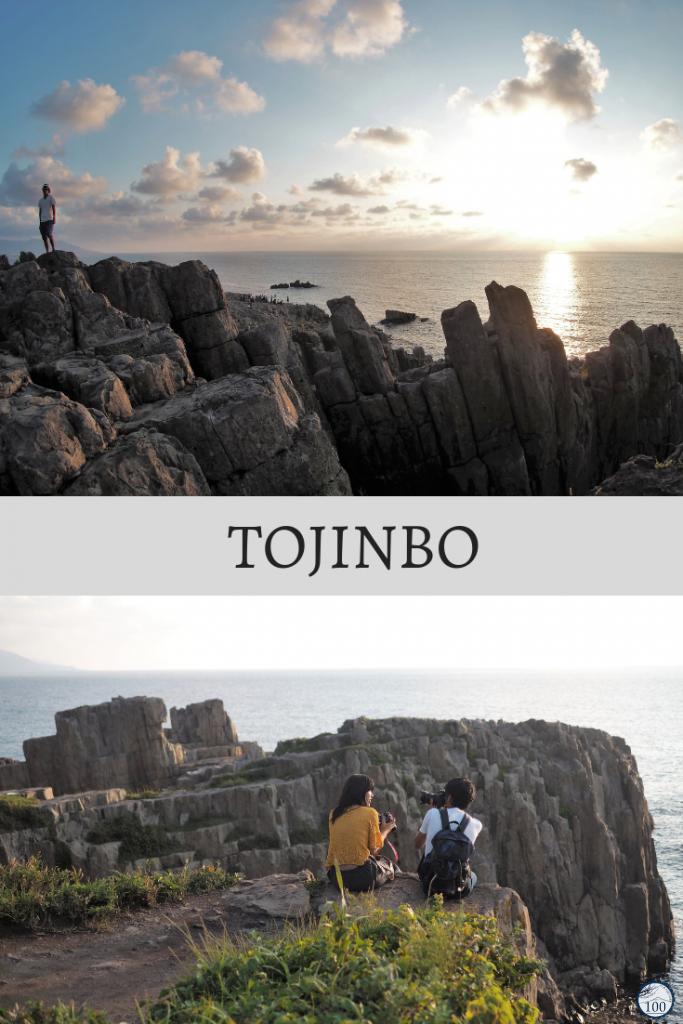 Les falaises de Tojinbo - Fukui